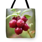 Lingonberry Tote Bag