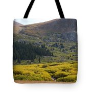 Mount Bierstadt In The Arapahoe National Forest Tote Bag
