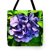 Rhythmn Of The Rain Tote Bag