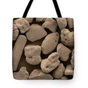 Sand Sem Tote Bag
