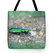 6-spotted Green Tiger Beetle Tote Bag