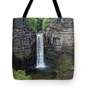 Taughannock Falls Tote Bag
