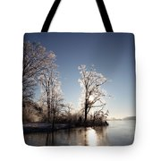Trees In Ice Series Tote Bag