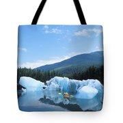 View Of Alaska Tote Bag