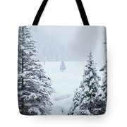 Winter Landscapes Tote Bag