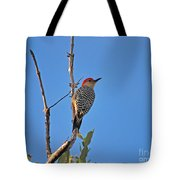 62- Red-bellied Woodpecker  Tote Bag