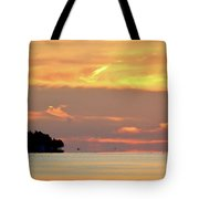 6.33.44 Am August 30-2016  Tote Bag