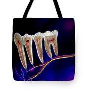 Anatomy Art Tote Bag