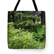 Alaska_00007 Tote Bag