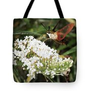 Clearwing Hummingbird Moth Tote Bag