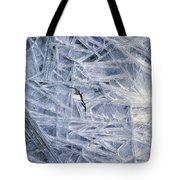 7. Ice Encrustation, Upper West Allen Tote Bag