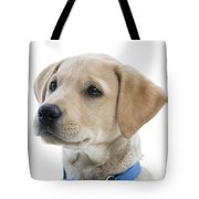 Labrador Puppy Tote Bag