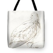Mourning Dove, Animal Portrait Tote Bag