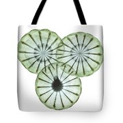Opium Poppy Pods, X-ray Tote Bag