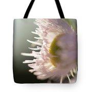 Pastel Purple Flowers Tote Bag