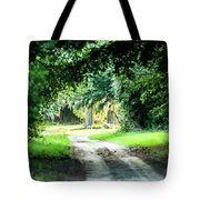 Scenes At Botany Bay Plantation Near Charleston South Carolina Tote Bag