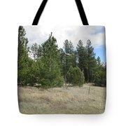 Show Low Landscape Tote Bag