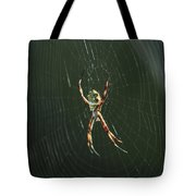 Spider On A Web Tote Bag