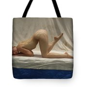 The Net Tote Bag