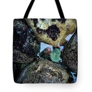 Wedding Rock At Patrick's Point State Park - California Tote Bag