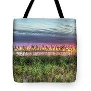 Yorktown Beach At Sunrise Tote Bag