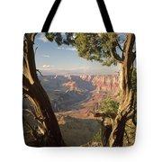 713261 V Desert View Grand Canyon Tote Bag