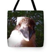 Australia - Kookaburra Stickybeak Tote Bag