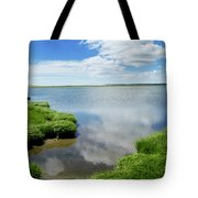 Cape Cod Salt Pond Tote Bag