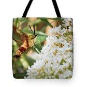 Clearwing Hummingbird Moth Tote Bag