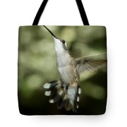 Female Ruby-throated Hummingbird Tote Bag