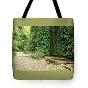 Fern Canyon Tote Bag