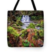 Goit Stock Waterfall Tote Bag