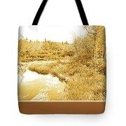 Stream In Autumn, Pocono Mountains, Pennsylvania Tote Bag