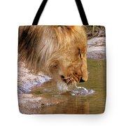 Zimbabwe Tote Bag