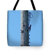 #866x Woodpecker Tote Bag