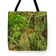 Mosses And Liverworts 8861 Tote Bag