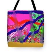 9-12-2057c Tote Bag