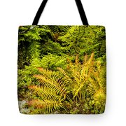 Fall Color Fern Tote Bag