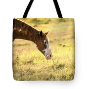 Horse In The Countryside  Tote Bag