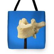Human Vertebra Tote Bag