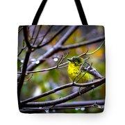 Img_0001 - Pine Warbler Tote Bag