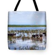 Lake Beysehir - Turkey Tote Bag