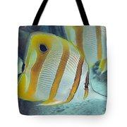 Malaysia Marine Life Tote Bag