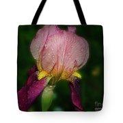 Nice Iris Tote Bag