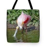 Roseate Spoonbill Tote Bag