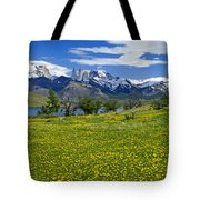Springtime In Torres Del Paine Tote Bag