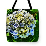 Squeeze Me  Tote Bag