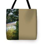 Tahquamenon Falls Tote Bag
