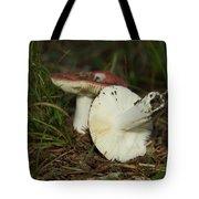9061 Tote Bag