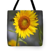 #933 D958 Best Of Friends Colby Farm Sunflowers Newbury Massachusetts Tote Bag